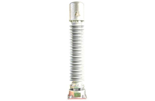 JENJH8-110W型光电型电子...